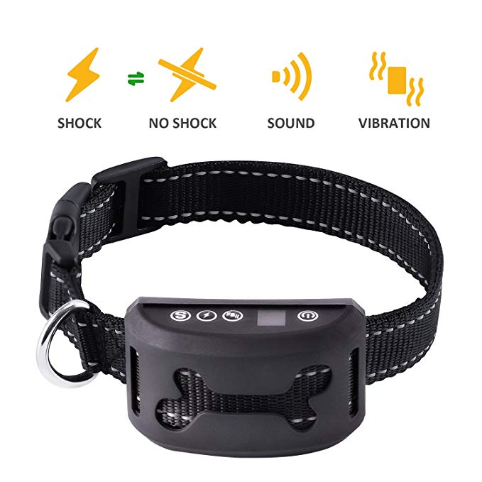 Best Bark Collar